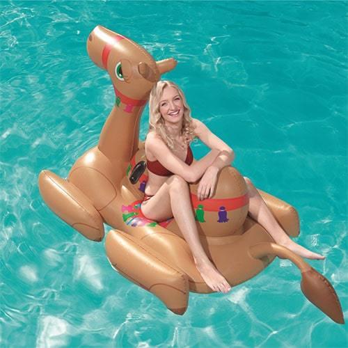 Bouée gonflable chameau